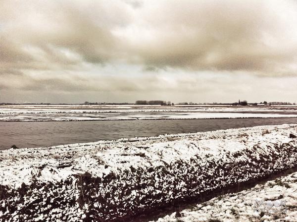winter iPhone iPhonografie