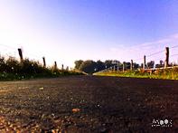 ochtenddauw in de herfst