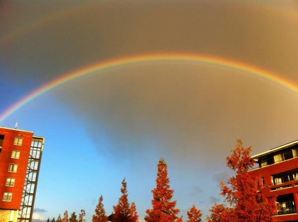Regenboog Gods Trouw