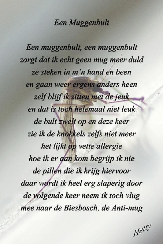 Muggenbult