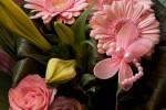 Bloemen uit een Boeket fotograferen